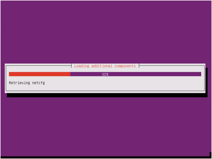 Install Ubuntu Server OS-11